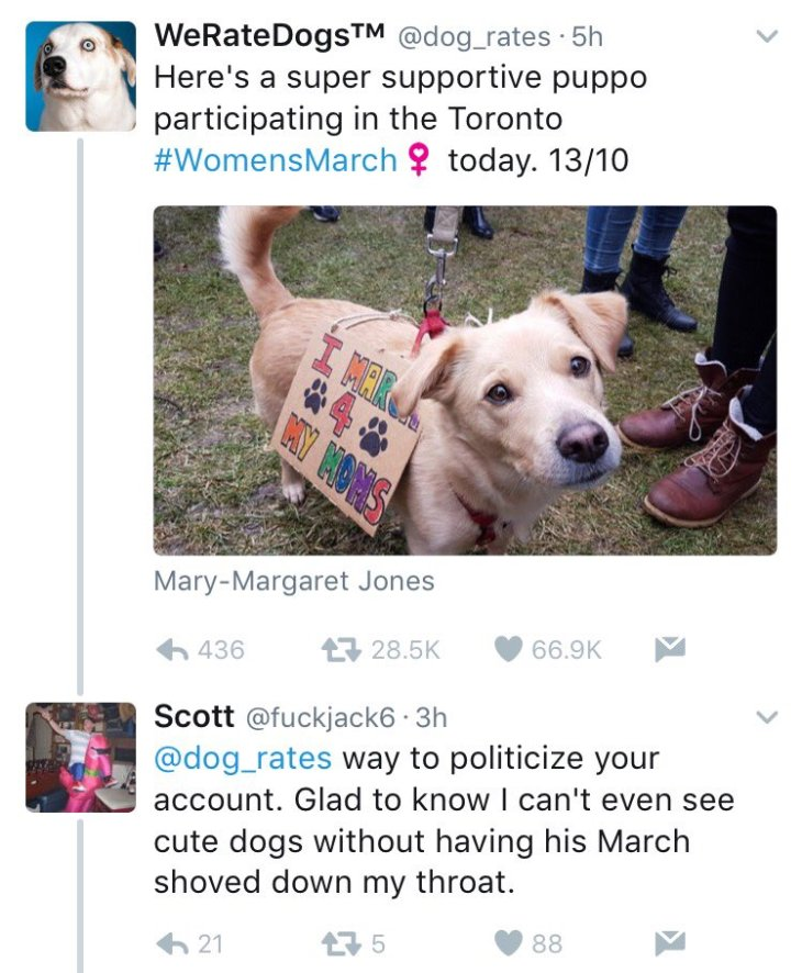 dogs-get-political